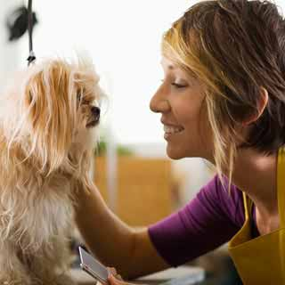 top animal jobs by penny smith expert career writer - Jobs With Animals Best Jobs Working With Animals